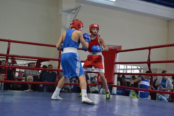 На традиционный турнир в Тамбов съехались более сотни лучших боксёров