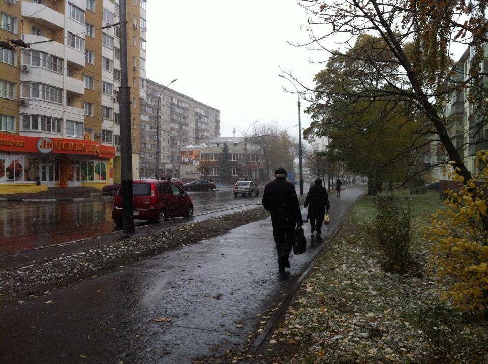 Тамбовские пользователи соцсетей делятся фотографиями первого снега