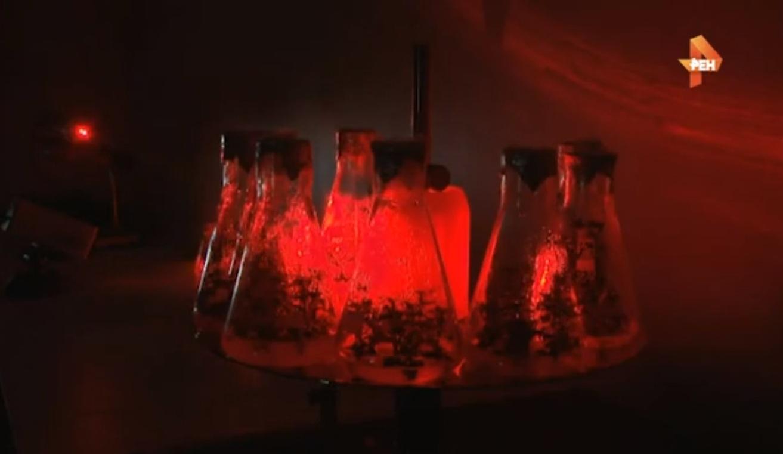 Русские ученые изобрели лазер, который спасет мир отголода