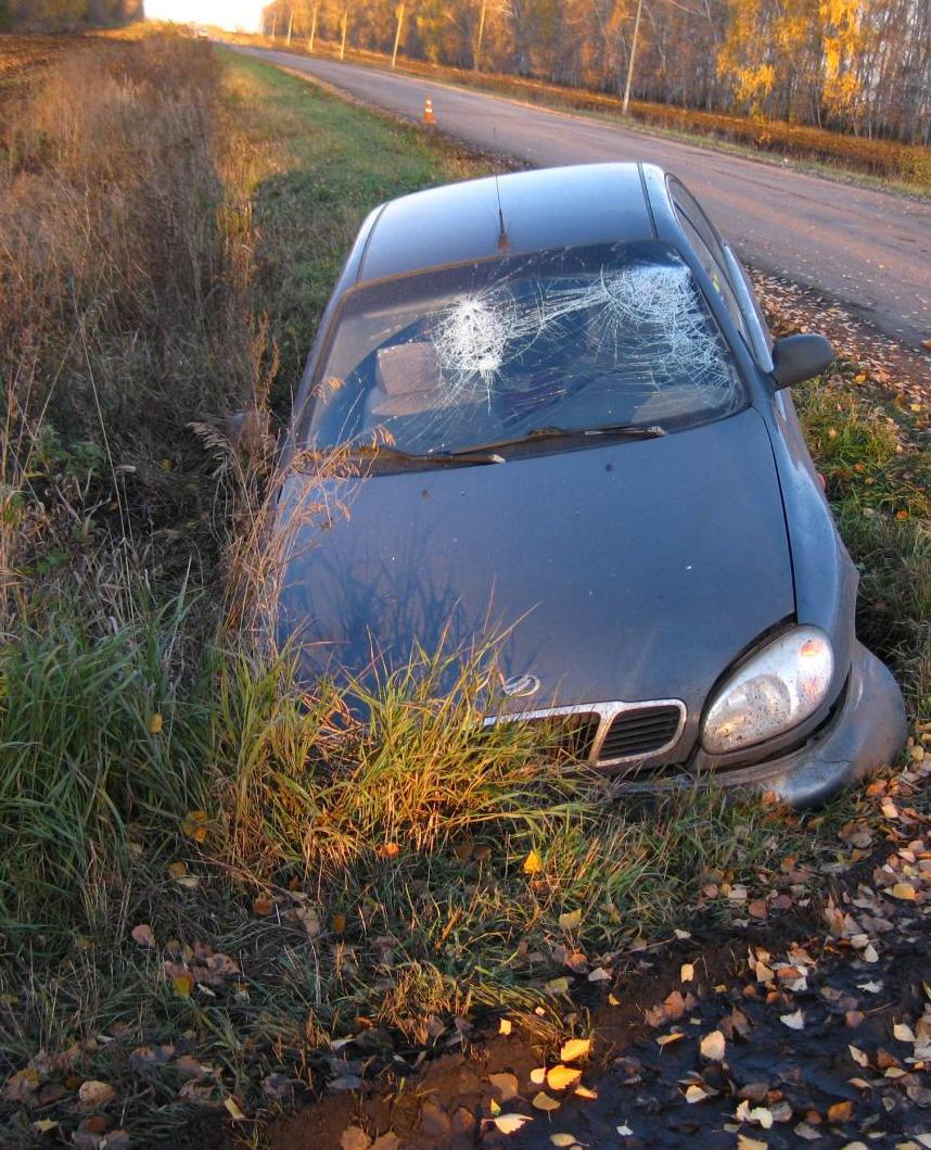 ВЖердевском районе автомобиль «ЗАЗ» съехал вкювет: есть пострадавшие
