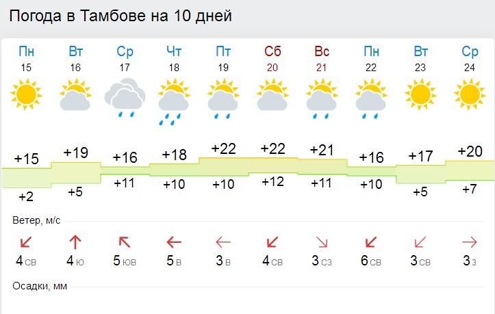 погода в тамбове на 14 октября термобелья