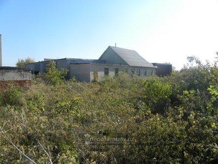 В Тамбове приступили к строительству приюта для бездомных животных