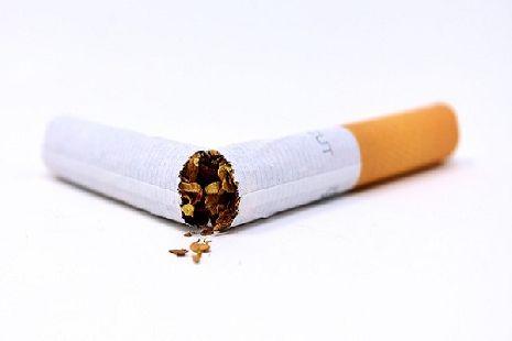 Купить табак для сигарет тамбов как заказать сигареты с доставкой