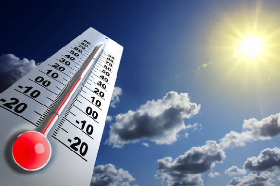 В связи с аномальной жарой в Тамбове объявлено экстренное предупреждение