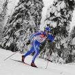 Лыжная гонка определит сильнейший городской округ